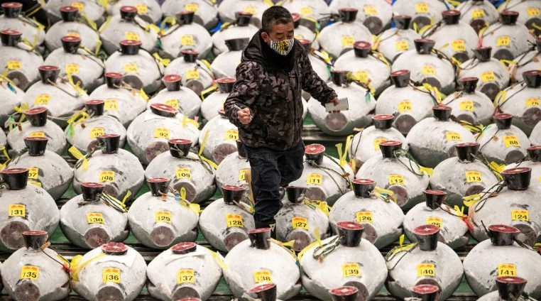 ПАНДЕМИЈАТА СЕ ОДРАЗИ И ВРЗ АУКЦИЈАТА НА ТУНИ ВО ТОКИО – НАЈСКАПАТА РИБА КУПЕНА ЗА САМО 202.000 ДОЛАРИ